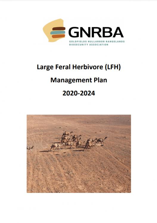 LFH-2020-2024