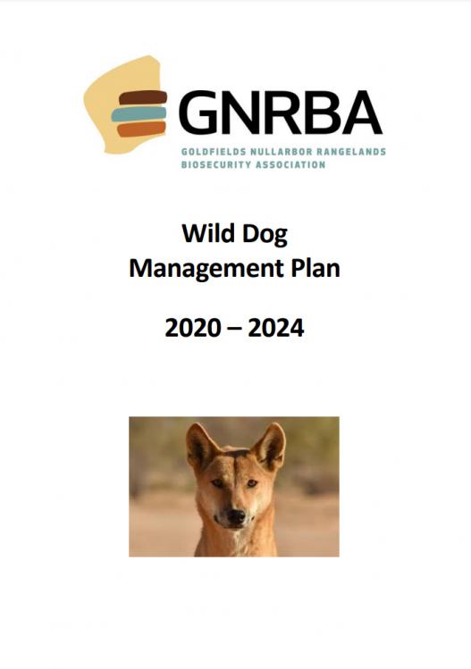 wild-dog-2020-2024
